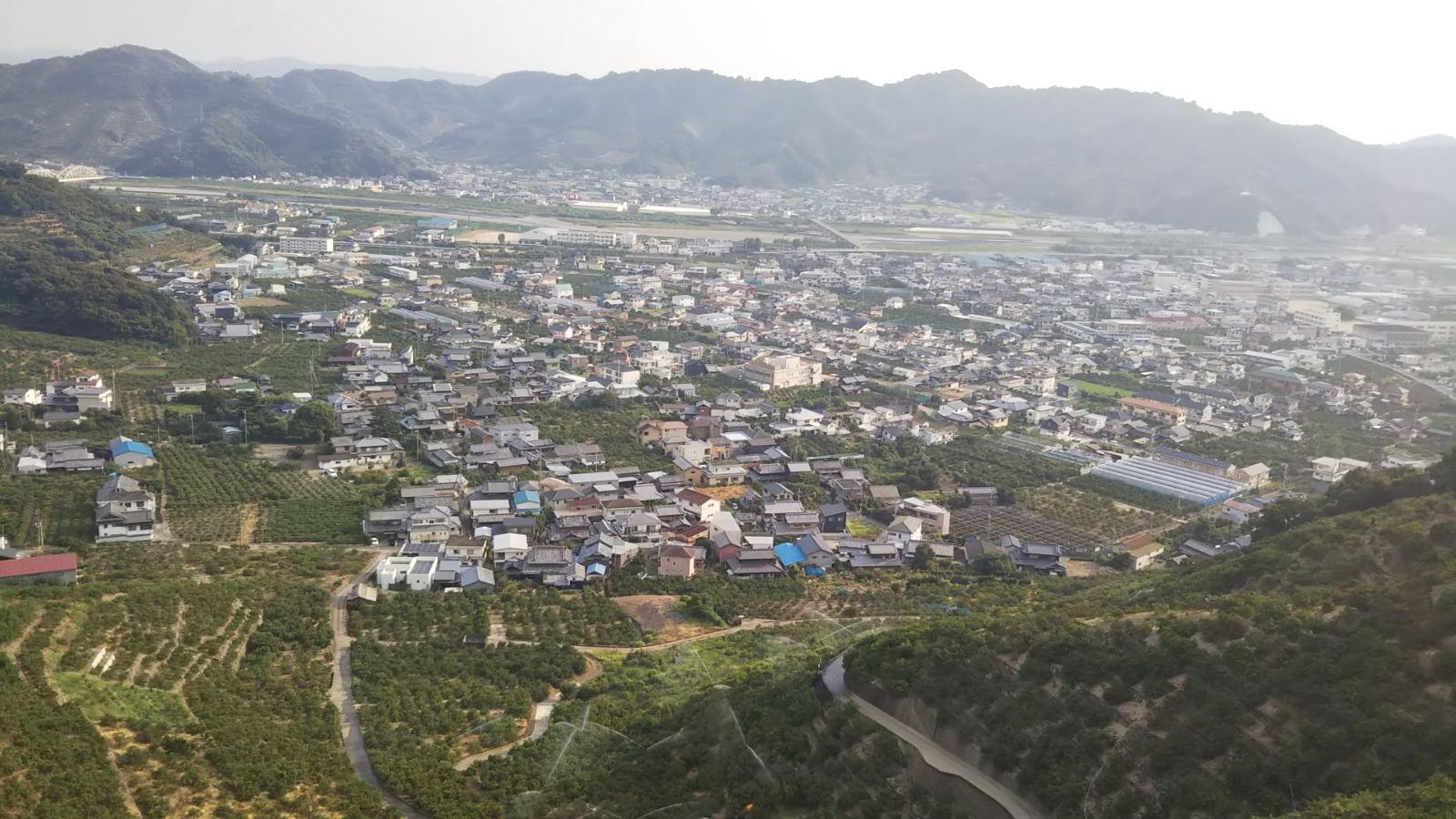 山から見る有田市の様子