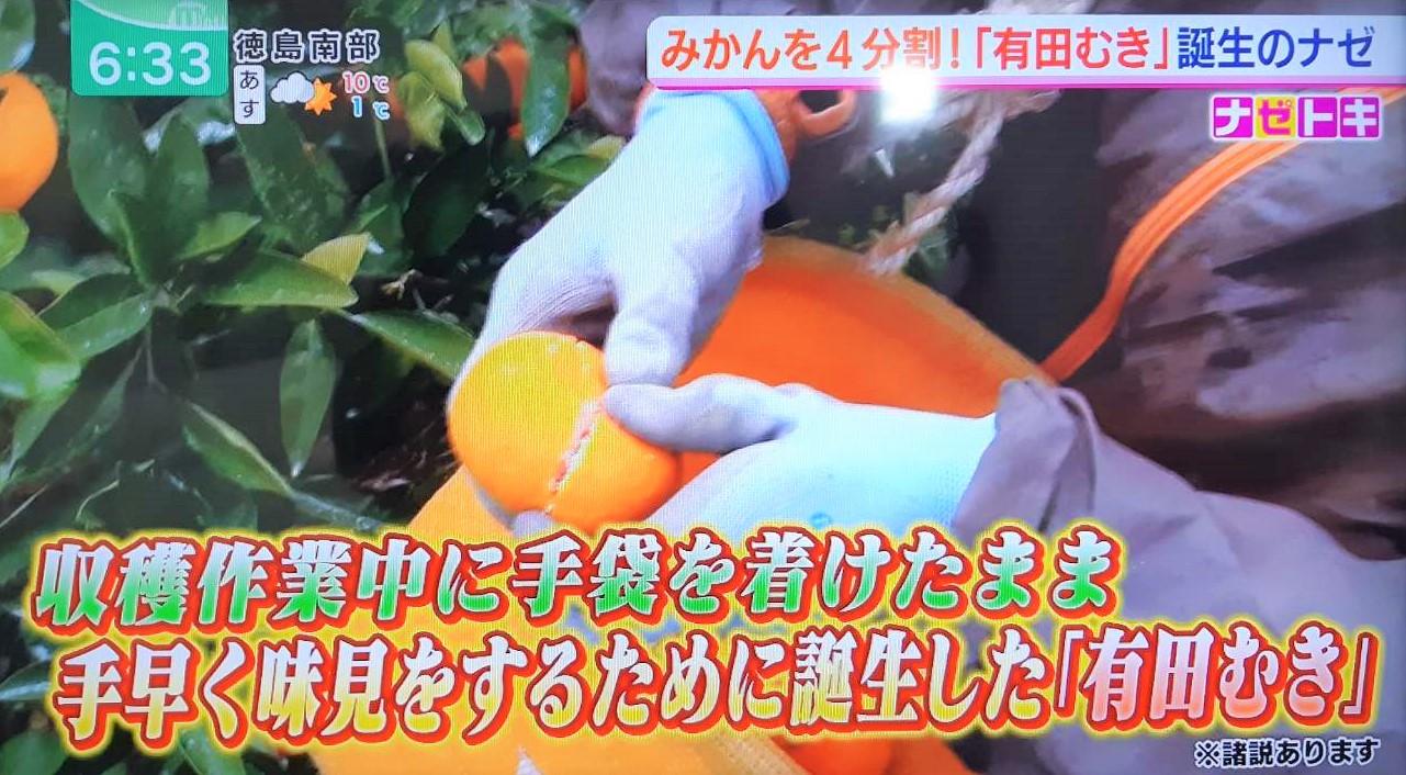 有田むきは収穫作業中に手袋をつけたまま手早く味見をするために誕生したのではないか?
