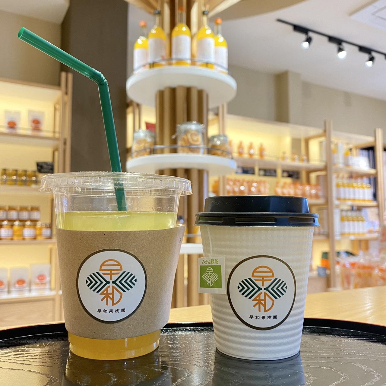 テイクアウトのカフェメニュー 果樹園のみかん緑茶 (左)アイス150円 (右)ホット100円