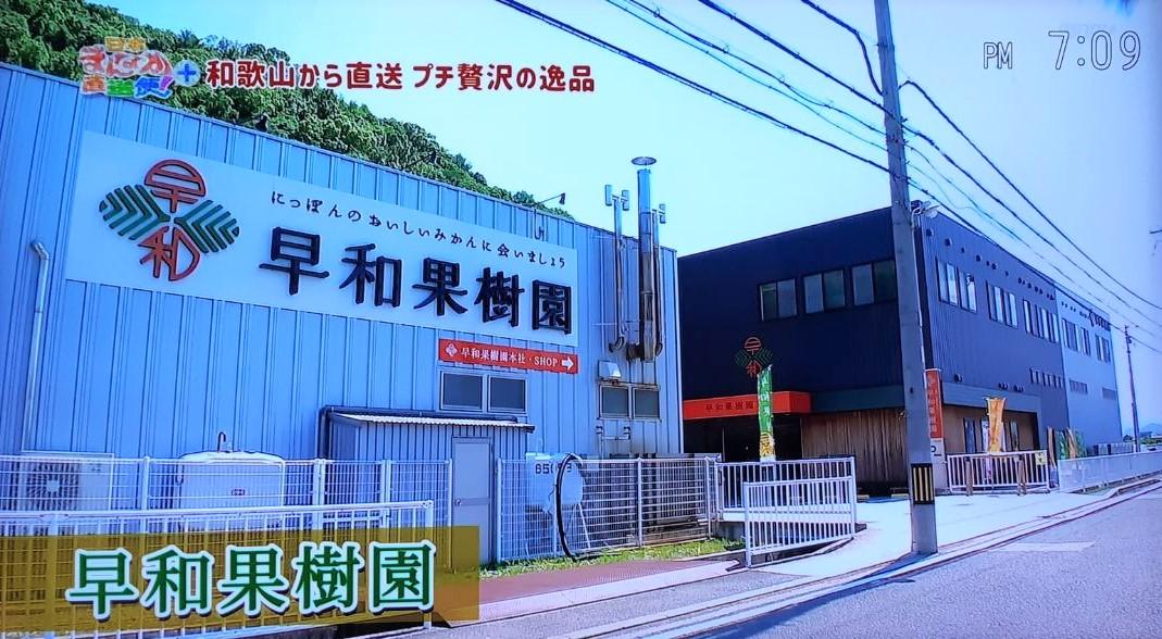 早和果樹園本社店を紹介いただきました。