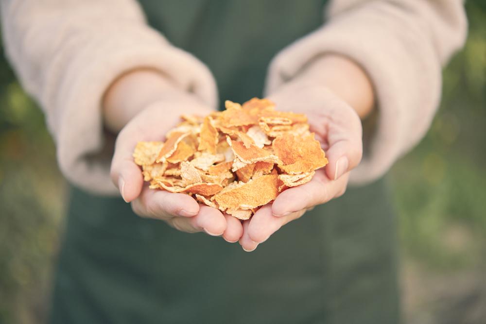 有田みかんの果皮から抽出されたチンピエキス。 肌を優しく整え、みずみずしい肌に導く効果は期待されています。